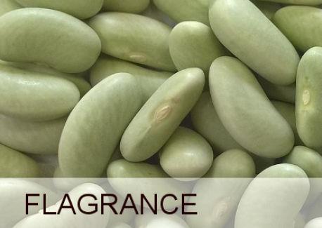 FLAGRANCE